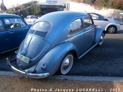 Love Bug Parade 2015