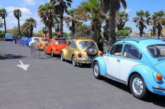 Classic VW Catalan #13