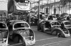 Photos 1951