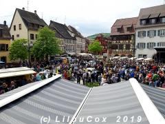 Molsheim_2019_0112.jpg